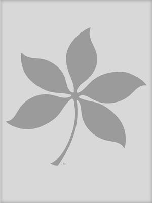 Pengcheng Luan