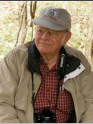 Stig Bergstrom