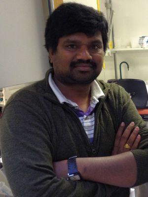 Manjunath Manubolu