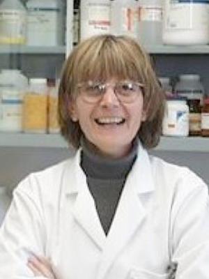 Maria Neff, M.D., Ph.D.